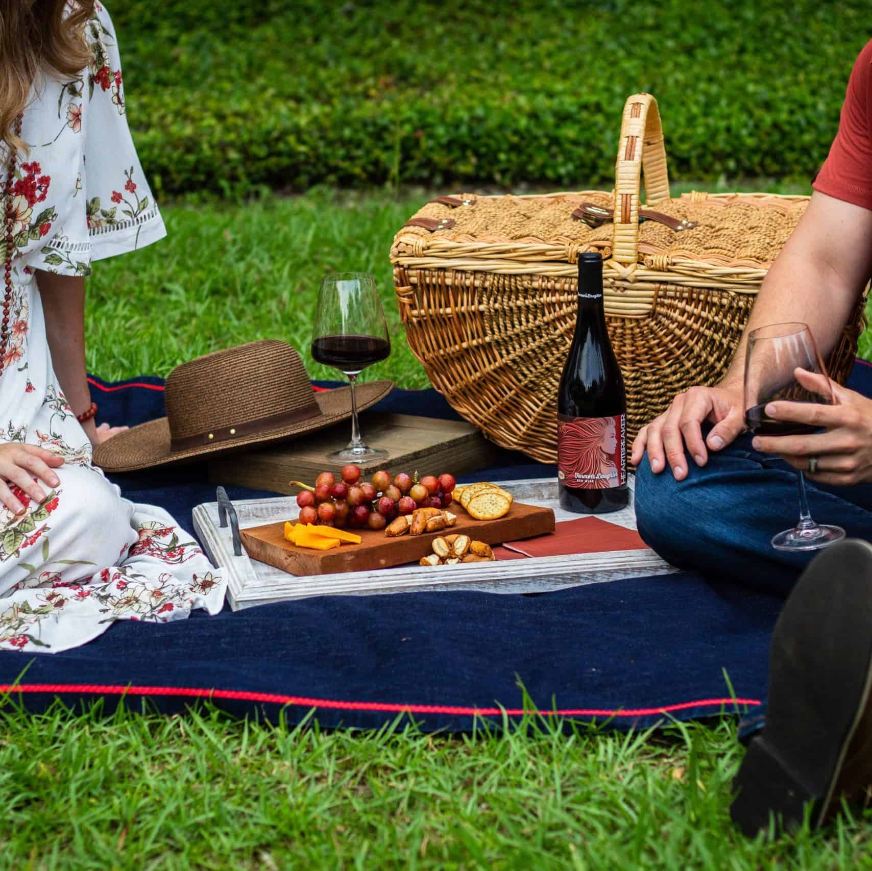 Wine-tour-with-picnic-in-the-vineyards