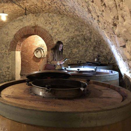 Group-and-private-wine-tours-in-Verona-Valpolicella-and-Soave