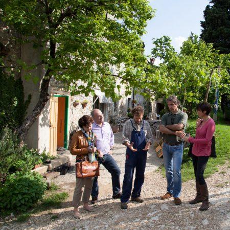 Amarone Wine Experience